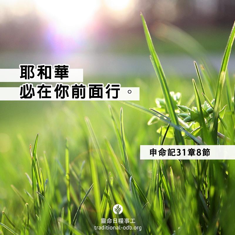 share-ctodb-2021-03-03